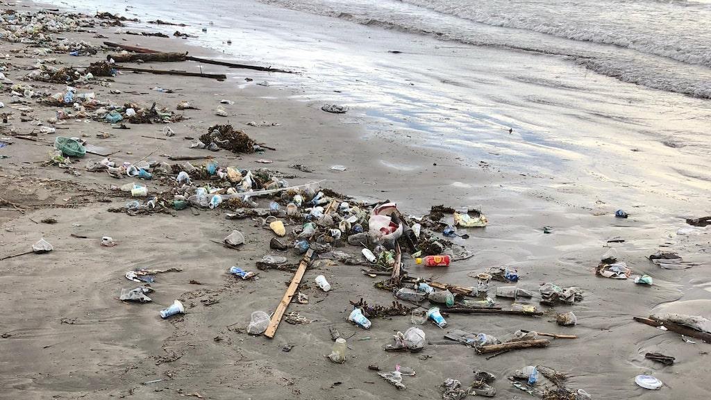 Stränderna vid Kuta och Seminyak är fulla med plastpåsar, blöjor, grenar och bråte.