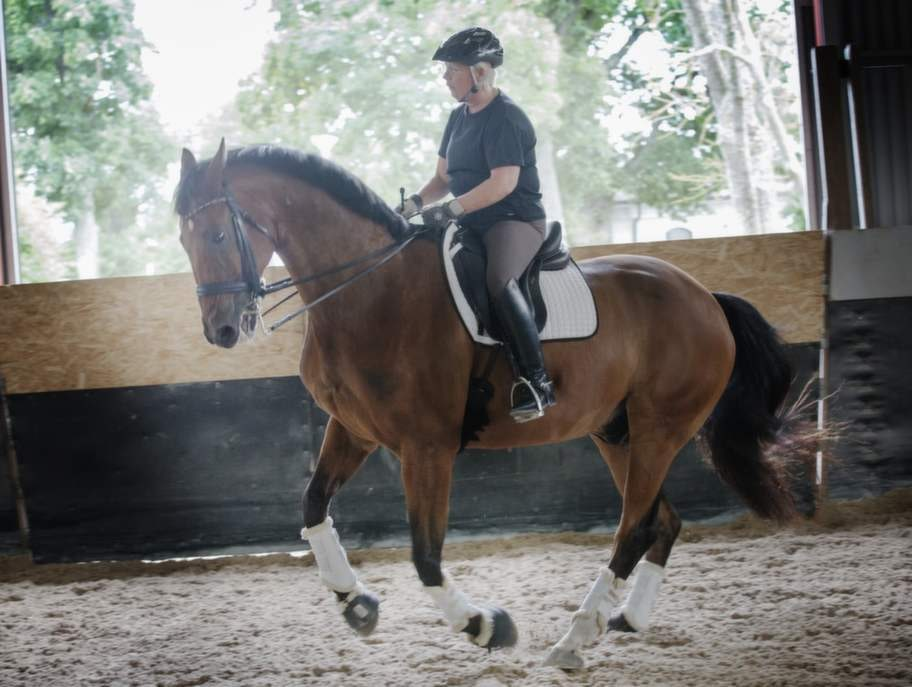 Hästarna är viktiga för Louise.