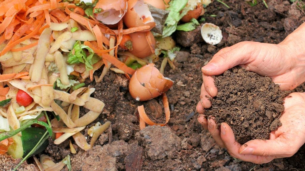 Att kompostera med bokashi har nästan blivit en folkrörelse. Allt fler upptäcker fördelarna med att förvandla sitt matavfall till jord med den japanska metoden.