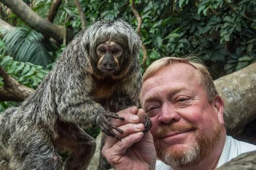 Jonas på primatreservatet Monkeyland i The Crags.