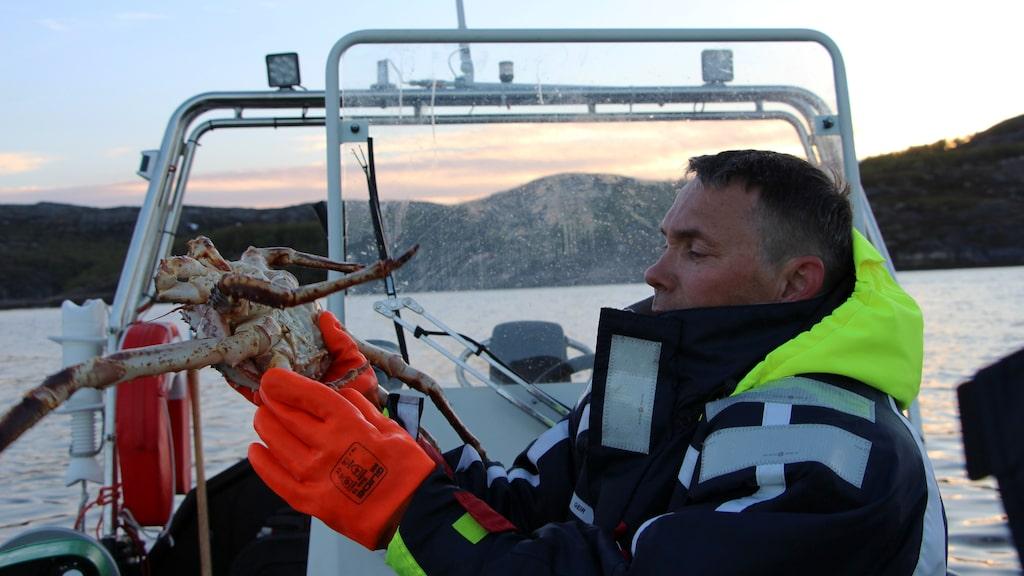 Geir Hansen är både guide, fiskare och kock på King Crab Safari i Kirkenes.