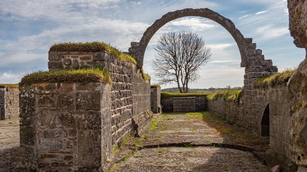 Ruiner efter nunneklostret i Gudhem. Systrarna levde i kyskhet och fattigdom.