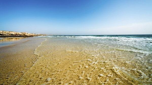 På Fuerteventura njuter du av härliga stränder.