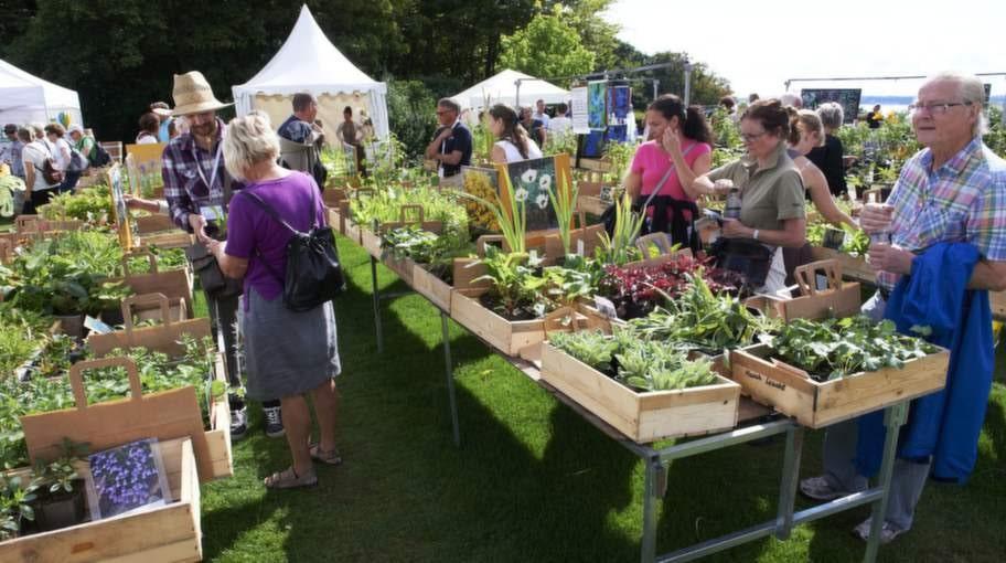 Trädgårdarna har ofta egna butiker där man kan handla växter, som här på Sofiero.