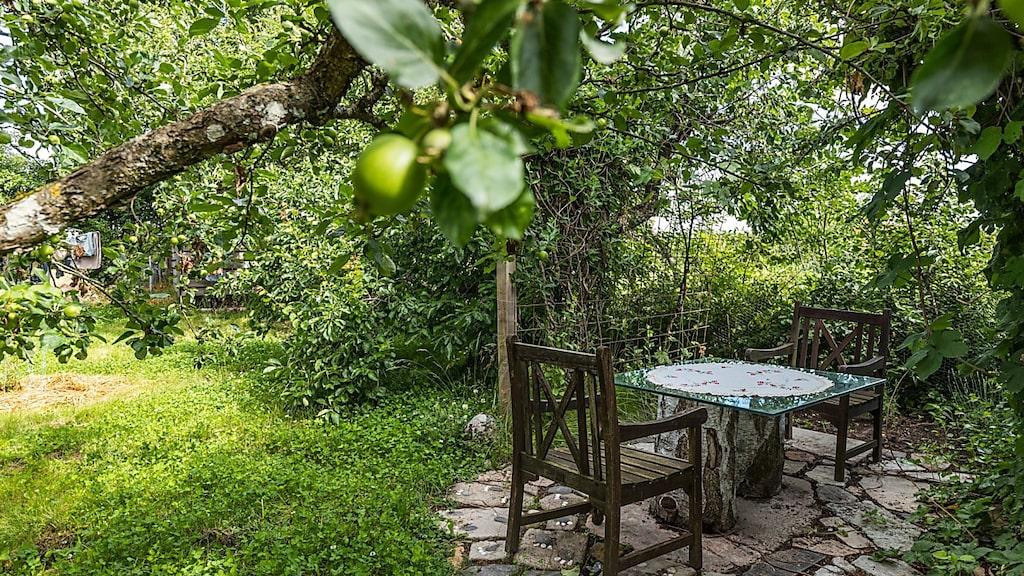 I den grönskande trädgården finns mängder av små oaser att njuta av. Här omgiven av äpplen, vindruvor och plommon.