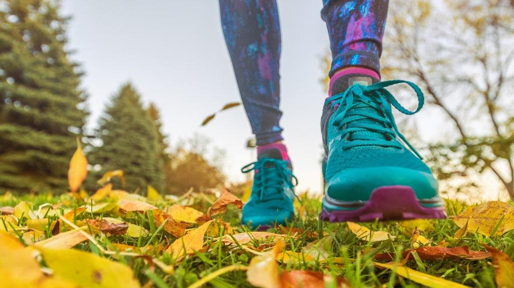 En promenad kan hjälpa dig återhämta knoppen, träna kroppen, stärka immunförsvaret och höja humöret.