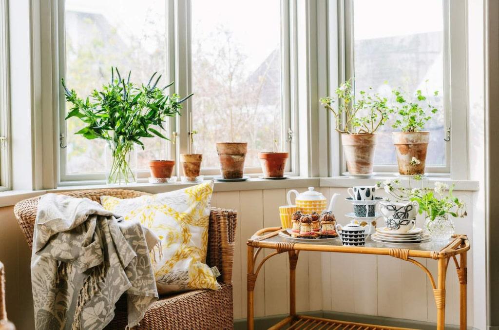 Retrokänsla. Kaffekanna med gult mönster, 670 kronor, koppar från 155 kronor styck, sockerskål med svart mönster, 435 kronor, allt från Houseofrym.com.
