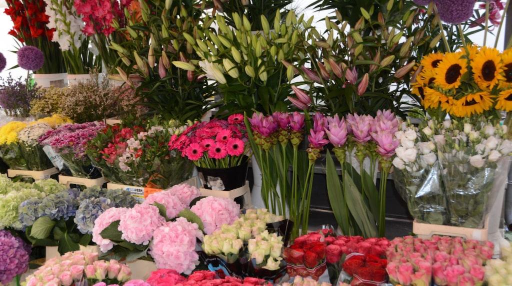 Färska blommor köper du på marknaden vid Pogacar torg.