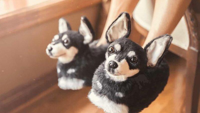 """Det amerikanska företaget """"Cuddle Clones"""" erbjuder handgjorda tofflor som ser på pricken ut som din egen hund."""