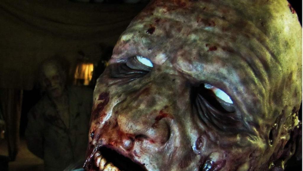 <p>Attackerande zombier springer fram från gömställen bakom stängda dörrar, fördragna draperier, genom rökfyllda korridorer och i fuktiga källare.</p>