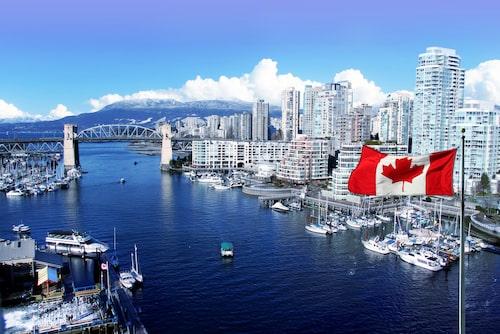 Grönprofilerade Vancouver har låtit plantera 102 000 nya träd.