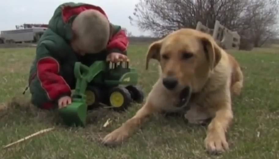 BÄSTA VÄNNER. Den lilla pojken överlevde ett dygn utomhus tack vare familjens hund Cooper.