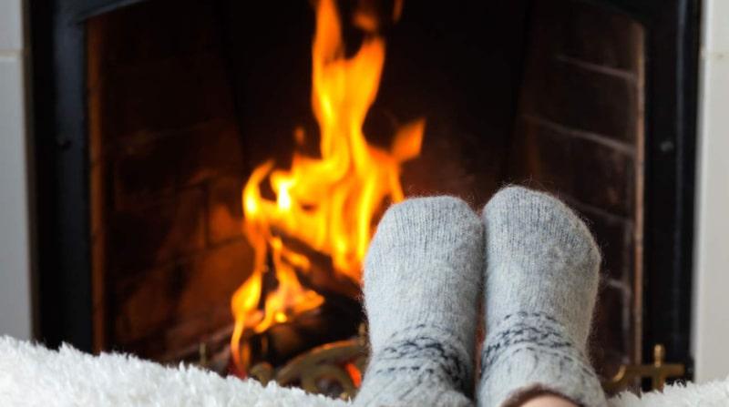 <p>Mysigt att elda i brasan! Men det gäller att veta vilken ved som är bäst – olika träslag brinner olika bra.</p>