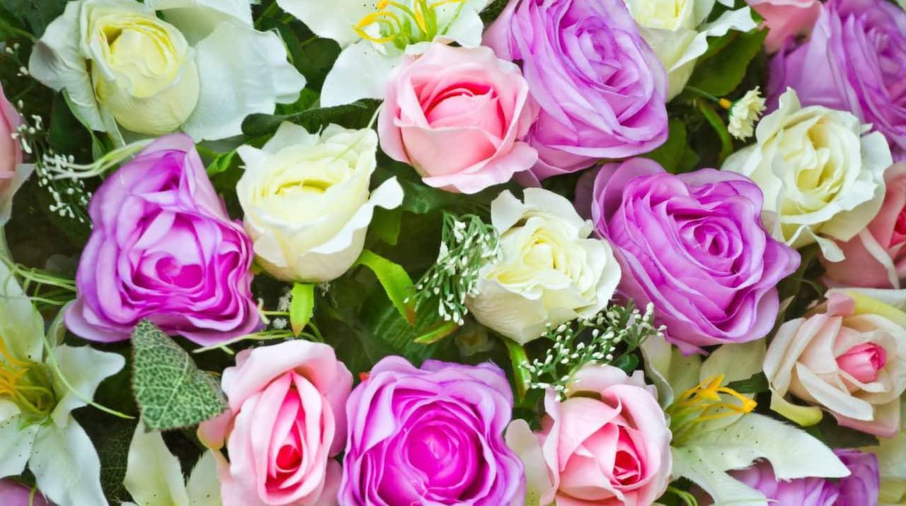 vad betyder vita rosor