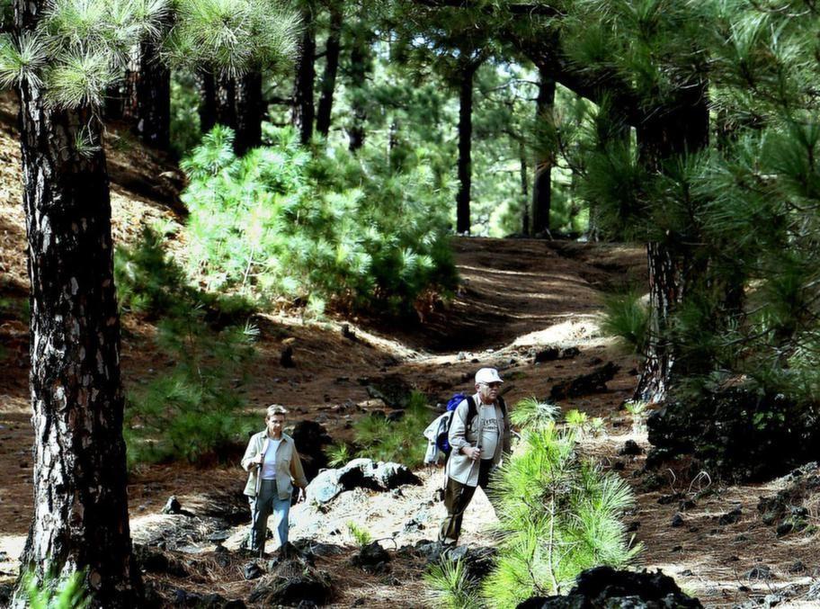 En populär vandring är Ruta de los Volcanes (Vulkanleden)