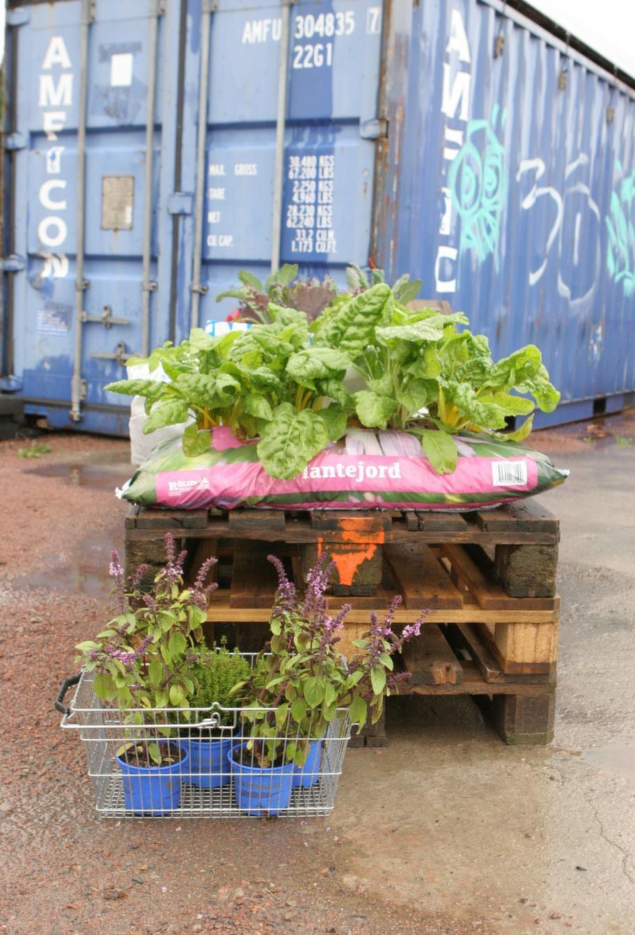 Flyttbara. <br>Stadsjords odlingar är mobila. Det går fort att flytta alltihop om det blir nödvändigt.