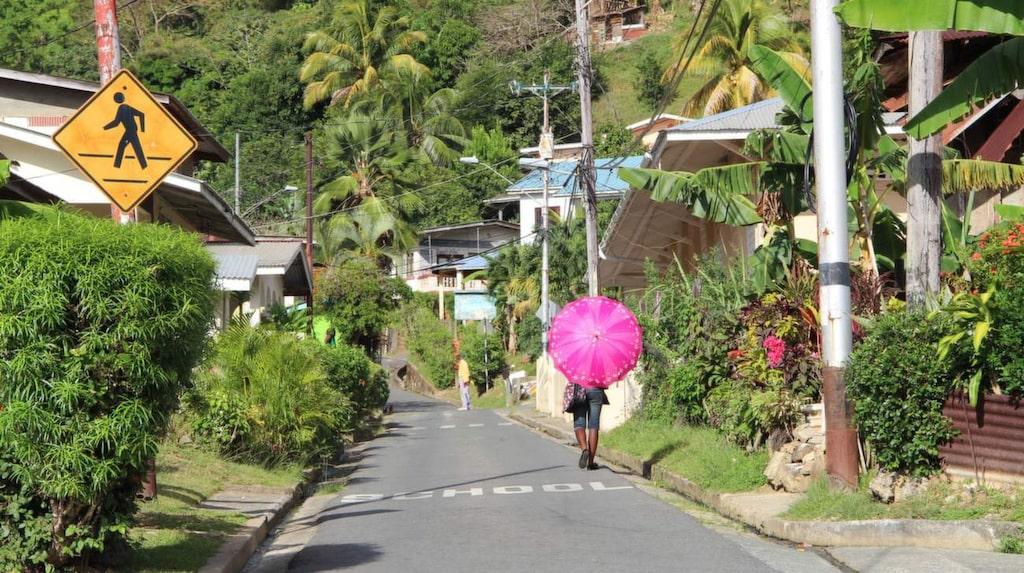 Lugnt tempo. Charlotteville är en lugn stad längst uppe på norra Tobago.