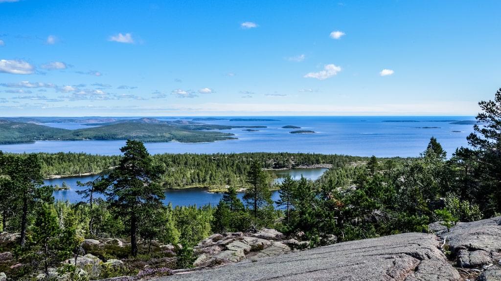 Att vandra på Skuleberget är en av Höga kustens mest populära upplevelser.