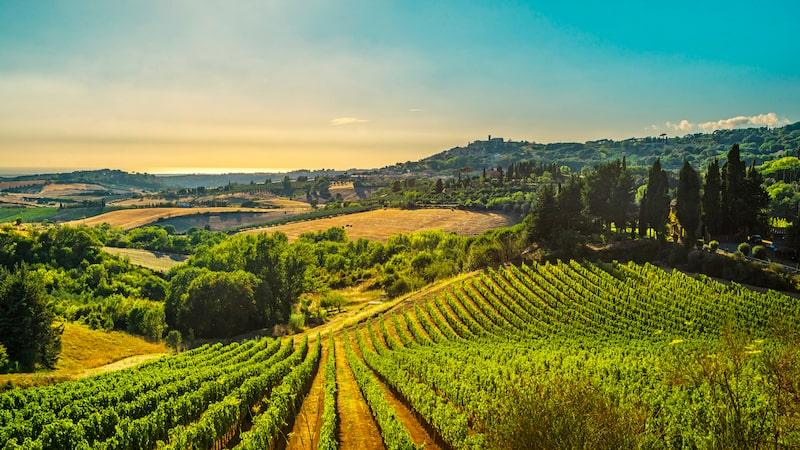 Italien kryllar av vingårdar, Allt om Vin tipsar om nio av dem.