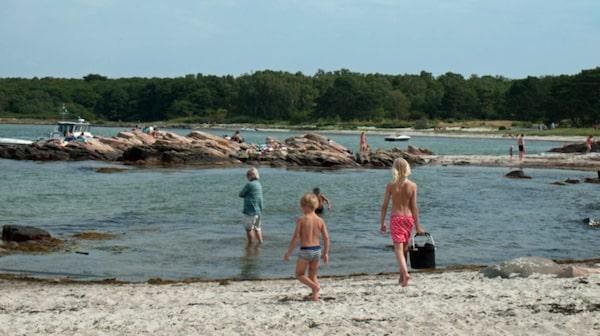 Det är främst för naturen man gör ett besök på Hallands Väderö.
