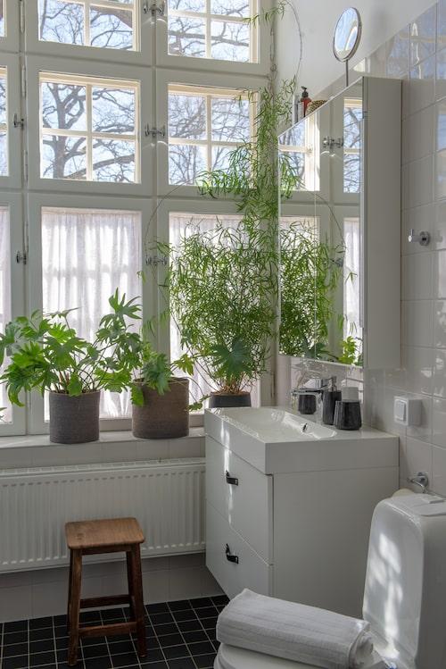 """Badrummet har lägenhetens största fönster och bästa ljus. """"Att stå och duscha en sommarmorgon och blicka ut över ekarna i parken med öppet fönster är magiskt"""", säger Elin. Kommod, Ikea. Läderhandtag, Design Beslag."""