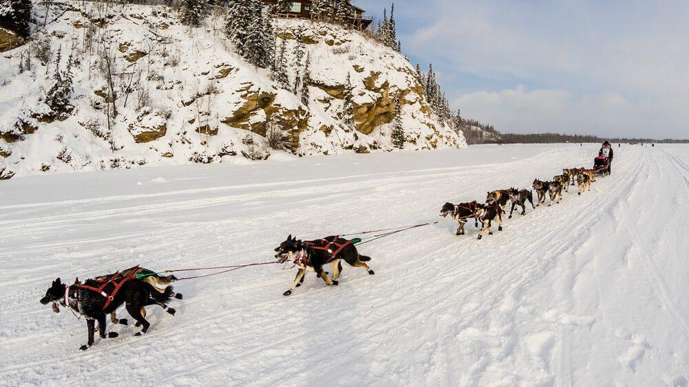 Iditarod race i Alaska tar minst åtta dygn, är 160 mil lång och bjuder på rikligt med snöfall, hårda, isande vindar och temperaturer ned till minus 50 grader.