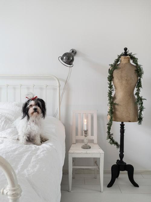 Alice på sin favoritplats i lägenheten. Provdockan har fått en boa av mjuken så här i jultid. Fransk Jieldé-lampa, Suedeco.