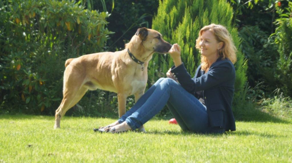 Till slut såg hon ingen annan utväg än att ta med sig den kärleksfulla hunden, som hon nu döpt till Rubio, hem.