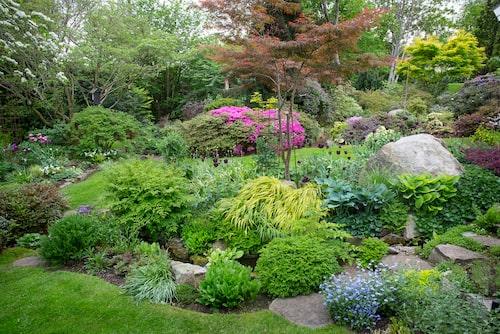 Det finns många slingrande gångar och trampstenar bland växterna i Bosses och Evas trädgård.