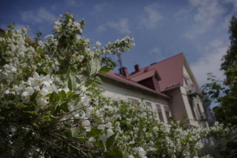 Blommande jasmin på skolgården.