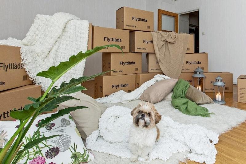 I allrummet har du plats för både sängavdelning och vardagsrumssektion.