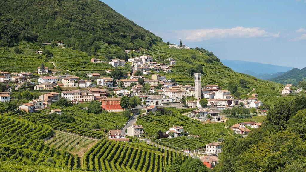 Man producerar prosecco i Veneto, i nordöstra Italien. Området inkluderar 15 kommuner kring bland annat byn Valdobbiadene.