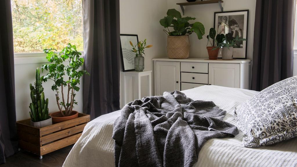 En Grön oas. Det grönskar även i sovrummet. På byrån står en korg med växten rundkalatea och två mindre krukor med fjäderkalla och hartassbräken. Tavlorna har Vanessa hittat på loppis och sängöverkastet kommer från Åhléns.