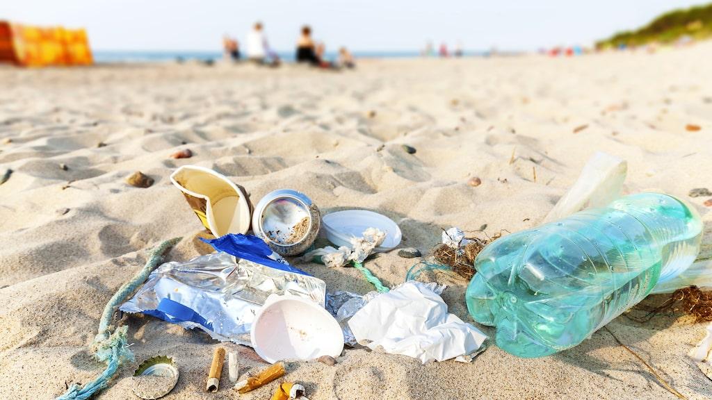 Plastlock, fimpar, engångsbestick och plastpåsar är bara några artiklar som olyckligtvis hamnar i våra hav.