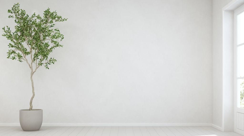 Skanskas undersökning visar att många är positivt inställda till att äga större lägenheter  som de delvis hyr ut.