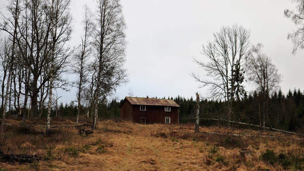 Läget är fridfullt och mitt i skogen med närhet till Nacketjärnet.