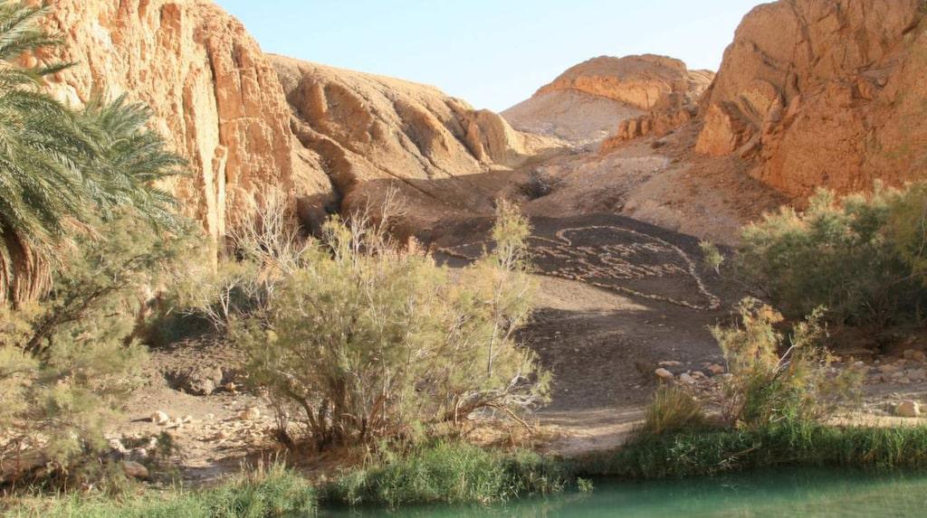I oasen Chebika kan du klättra i berg och bada i varma källor.
