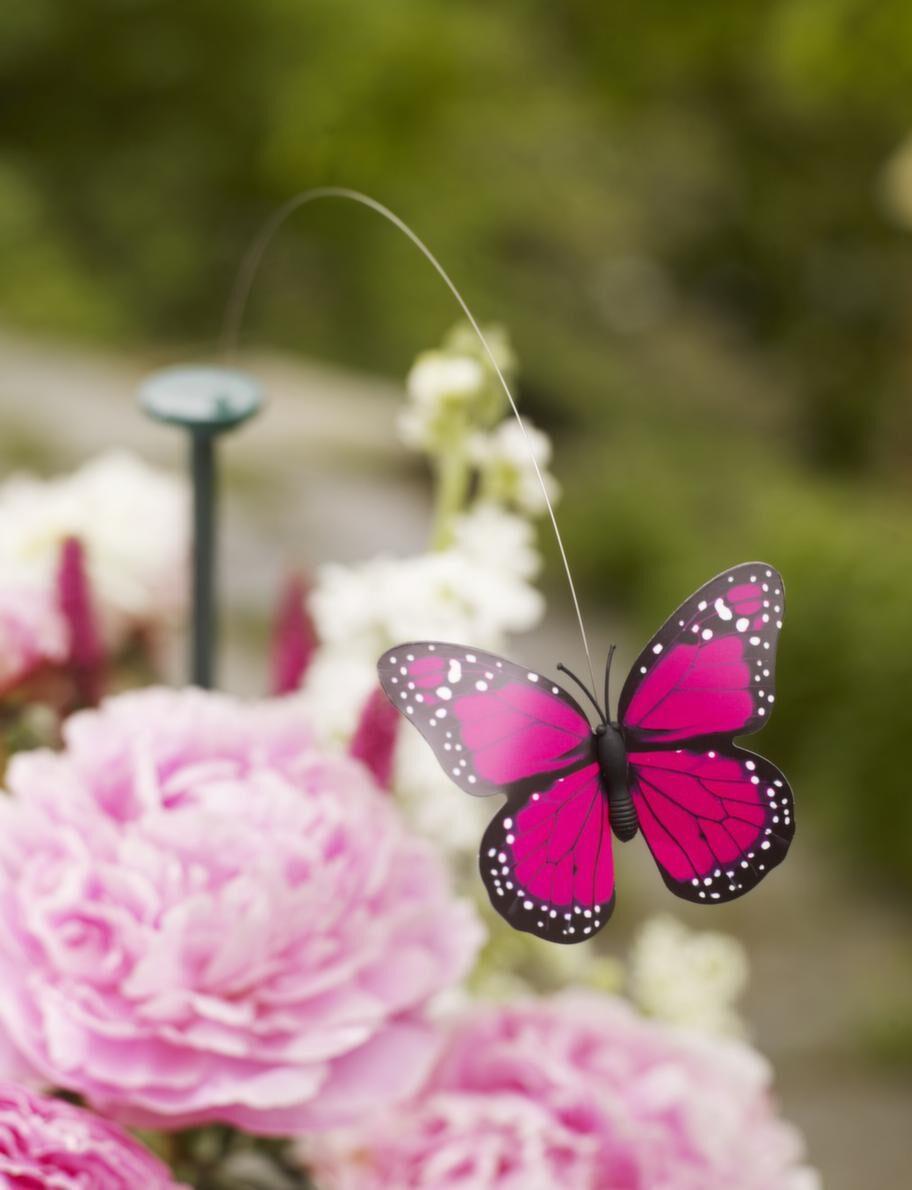 Flygande dekoration.<br>En flygande fjäril snurrar fint över bordet med hjälp av solceller, 95 kronor, Designtorget.