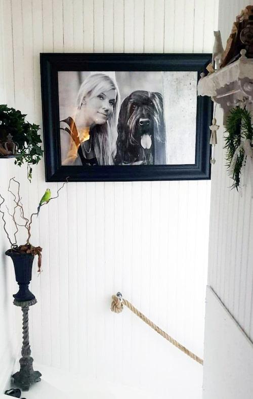 Ett porträtt på Lotta och hennes hund Ecco hänger på väggen i den ljusa trappen.