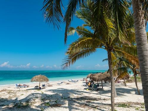 Ön Cayo Levisa, strax utanför Kubas nordvästra kust.