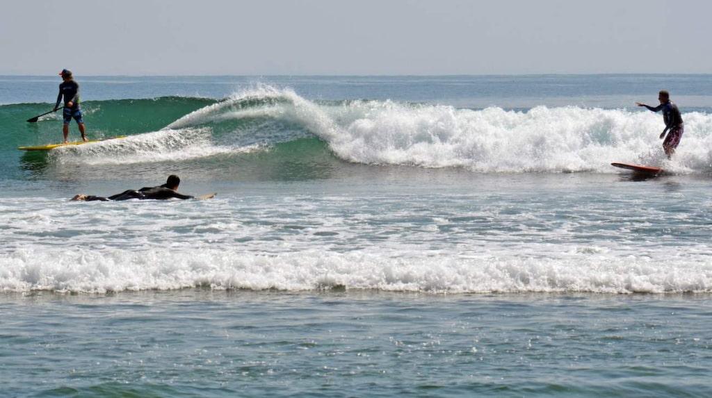 En drygt 20 minuters bilresa från Santa Monica längs Pacific Coast Highway leder dig till Malibu.