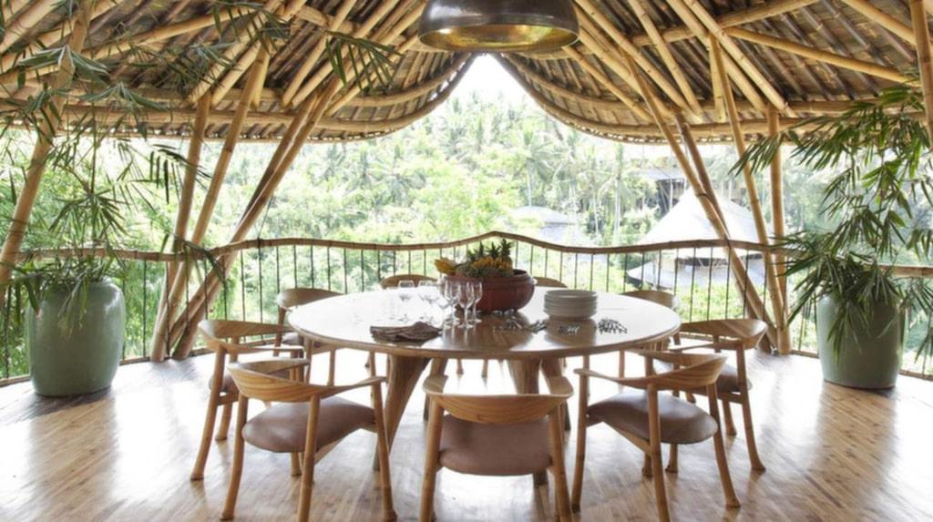Bambu är både miljövänligt, hållbart och en av de snabbast växande plantorna på jorden.