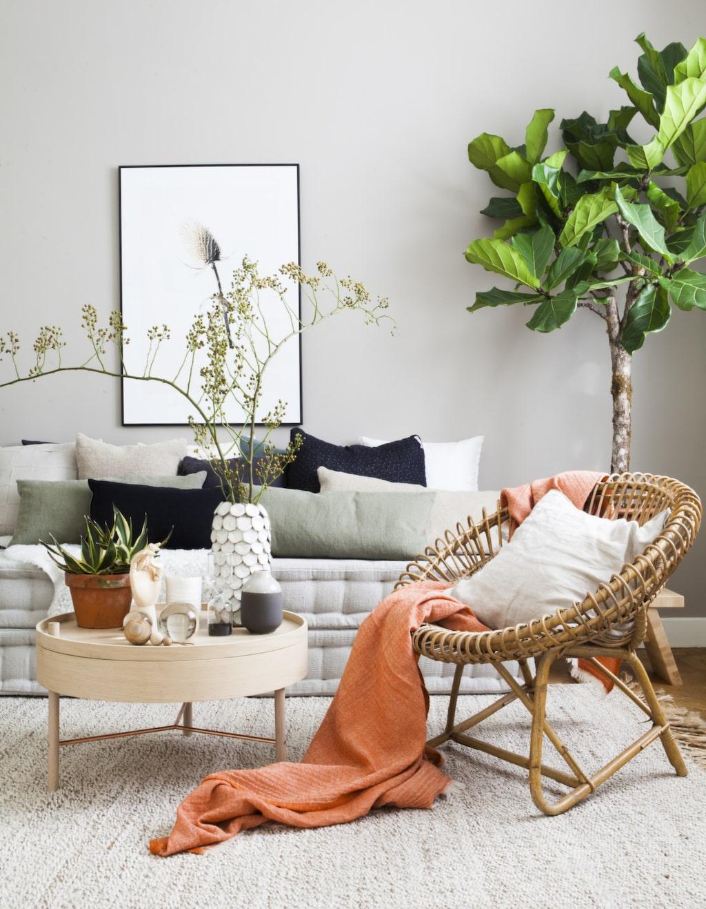<p>Björk, rotting, kork och linne! Tillsammans med jordfärger som terrakotta och grågrön<br>lera skapar du rogivande rum. Och glöm inte att addera massor av gröna växter för en ombonad känsla.</p>