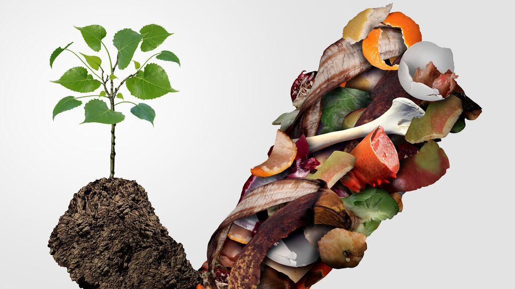 Men det är många som inte vet hur man komposterar rätt. Här nedan är 16 saker du absolut inte ska slänga i komposten!