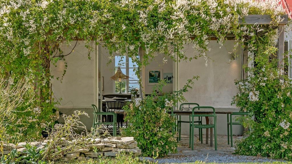 Trädgårdens lummigaste uteplats finna alldeles utanför köket.