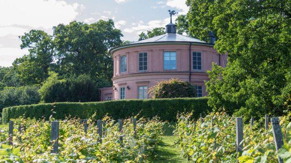 Strax väster om Rosendals slott ligger Rosendals trädgård.