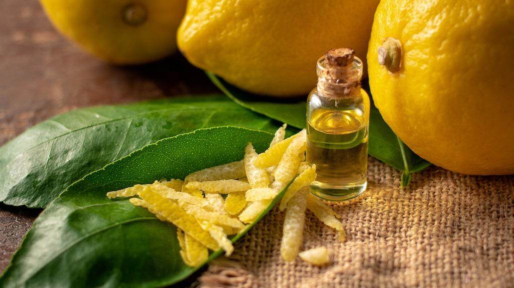 Eterisk citronolja som är starkt antibakteriell är ett effektivt rengöringsmedel.