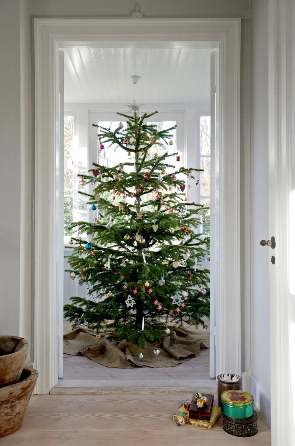 Den vackra granen är pyntad med antika juldekorationer köpta på loppmarknader.