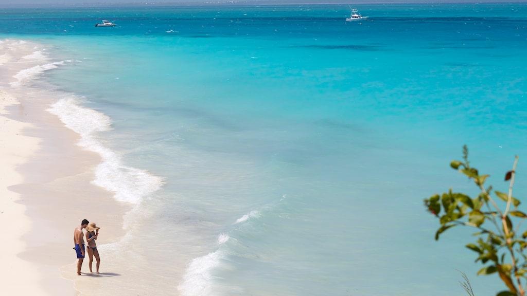 Zanzibar är känd för sina vita sandstränder.