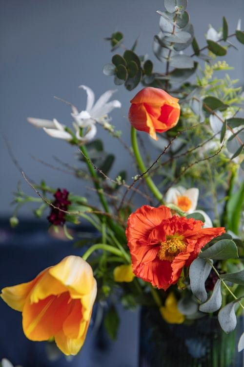 Blå hög glasvas, 340 kronor för set om tre, Måleributiken i Alvik. I vasen prunkar fransk tulpan, vallmo och eucalyptusblad, från Floristkompaniet.